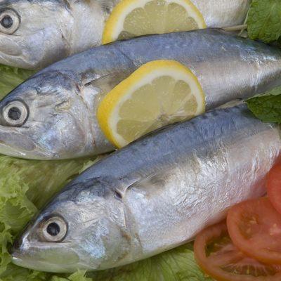 Fish Products - Fresh