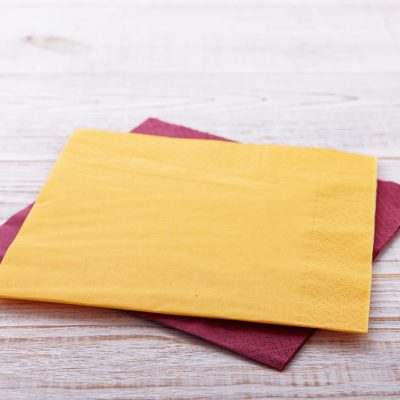 Napkins 2 Ply 40cm Various